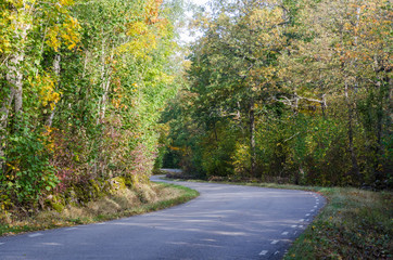 Winding country road in fall season