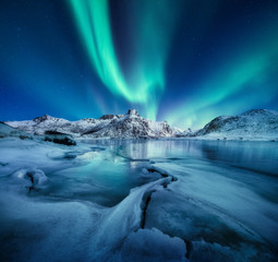 Foto op Aluminium Natuur Aurora Borealis, Lofoten islands, Norway. Nothen light, mountains and frozen ocean. Winter landscape at the night time. Norway travel - image
