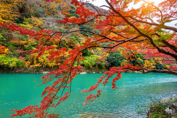 Wall Mural - Arashiyama in autumn season along the river in Kyoto, Japan.
