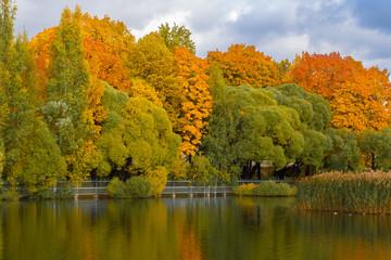 Beautiful autumn landscape in the park. Saint-Petersburg, Russia...