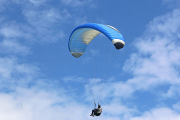 Fototapete - Paraglider flying wing in a blue sky