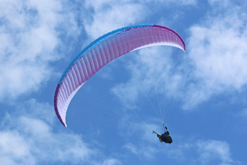 Wall Mural - Paraglider flying wing in a blue sky