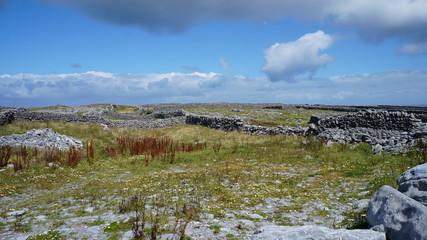 Alte historische Steinmauern auf Island