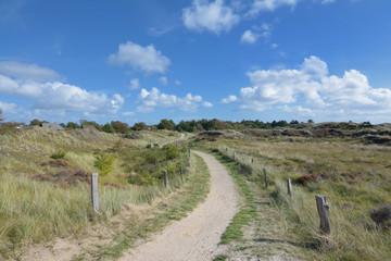 Wanderweg durch die Dünen von Sankt Peter-Ording an der Nordsee,Nordfriesland,Schleswig-Holstein,Deutschland