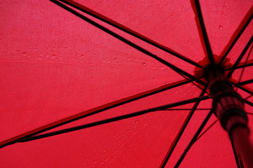 red umbrella in raindrops, photo from inside