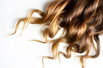long brown curly hair on white isolated background