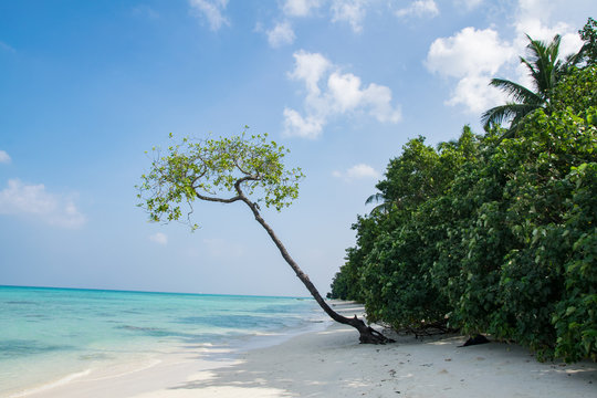 Radhanagar Beach at Havelock Island