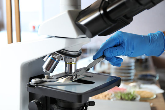 Scientist working with microscope in laboratory, closeup. Phytopathological analysis