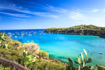 Elba island beautiful view near Fetovaia beach