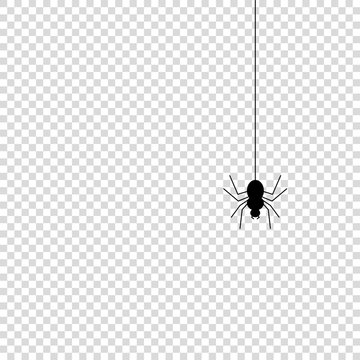 Spider icon mock up vector illustration isolated
