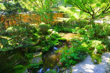 The japanese garden of Hosen-in Temple, Kyoto, Japan