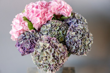 Selective focus. Bouquet of purple and green flower. Beautiful hydrangea flowers in a vase on a table. Decoration of home. Wallpaper and background.