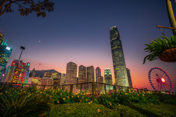 Fototapete - Hong Kong Cityscape at evening