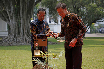 Indonesian President Joko Widodo and Dutch Prime Minister Mark Rutte prepare to plant a tree during a welcoming ceremony at the presidential palace in Bogor