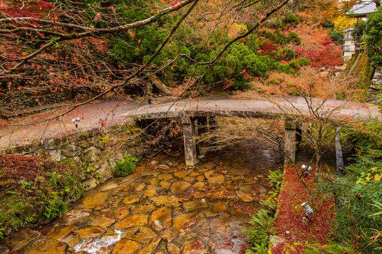 日本の秋 滋賀 日吉大社49  Autumn in Japan, Shiga Prefecture, Hiyoshitaisha #49