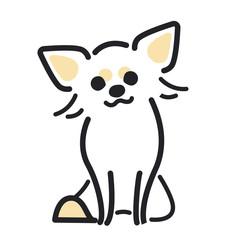犬 ポーズ 表情 1匹 ちわわ おすわり