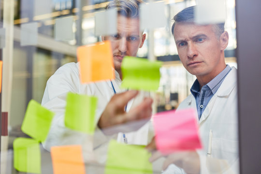 Two doctors carefully read notes with ideas