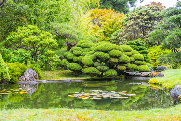 The Beautiful Japanese Tea Garden in Golden Gate park, San Francisco.