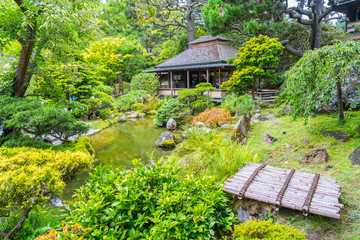 View of Japanese Tea Garden in Golden Gate Park.