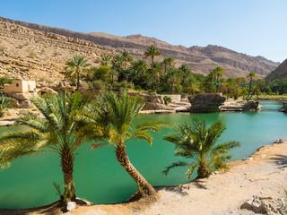 Sultanate of Oman, Sharqiya region, Muqal, Wadi Bani Khalid, freshwater lake