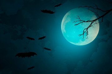 Full moon with blue Halloween night background