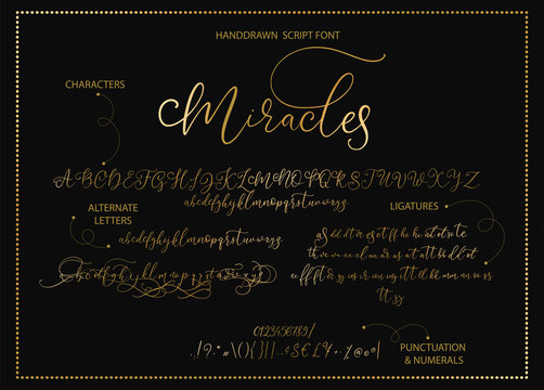 Hand drawn vector alphabet font font with letters, numbers, symbols alternates and ligatures. For calligraphy, lettering, hand made quotes.