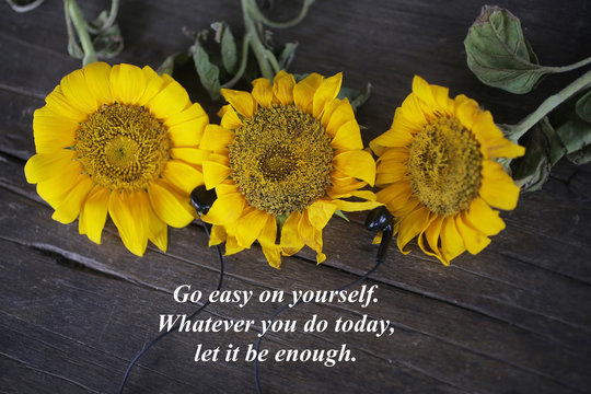Inspirational words with yellow sun flowers - Go easy on yourself. Whatever you do today, let it be enough. Three beautiful sunflowers blossom decoration on the rustic wooden table background.