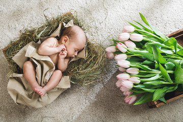 Cute little baby is lying in the wooden box and heap of pink tulips