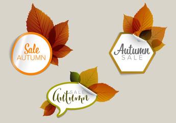 Autumn Sale Sticker Icon Set