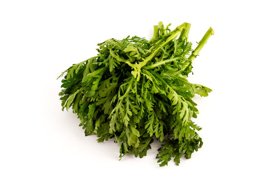 a batch of tung ho, Chrysanthemum greens, on white background