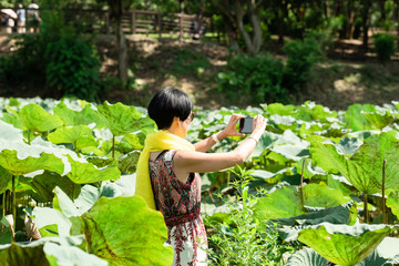 woman take a picture in the lotus farm