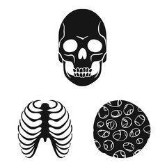 Vector design of biology and medical sign. Collection of biology and skeleton vector icon for stock.