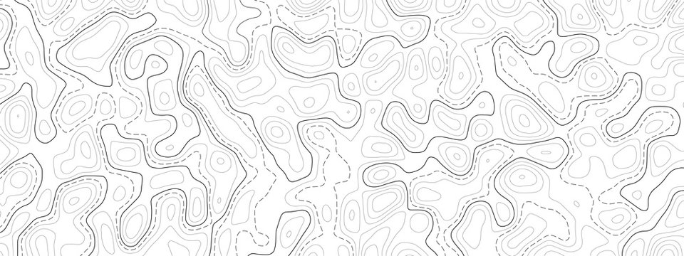 Topography map background. Vector geographic contour map.