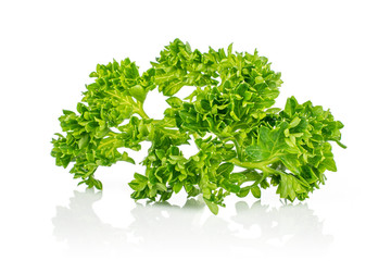 One whole fresh green parsley isolated on white background Wall mural