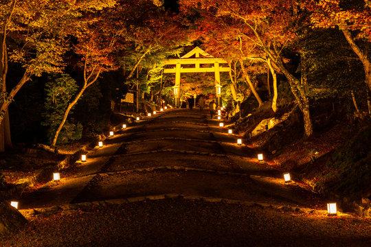 日本の秋 滋賀 日吉大社79  Autumn in Japan, Shiga Prefecture, Hiyoshitaisha #79