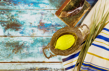 Religion jewish celebration holiday Sukkot. Etrog, lulav, hadas arava kippah and shofar tallit...