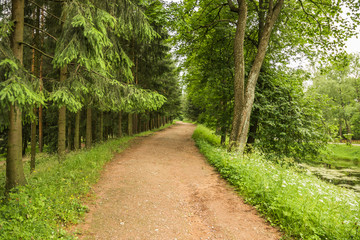 The road leading to nowhere in Catherine Park in the royal village in Saint Petersburg