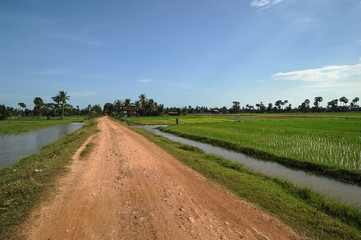 Countryside in Kampot province, Cambodia