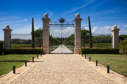 The wine chateau Léoube Alpes-Maritimes, Cote d'Azur, southern France, France, Europe