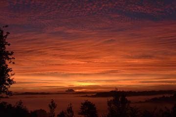 Papiers peints Marron Lever de soleil dans le sud ouest en ce jour d'automne