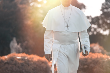 Pope walks at the end of the day in the garden         Fotomurales
