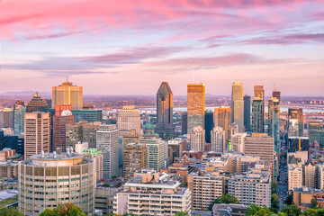 Wall Mural - Montreal from top view at sunset in Canada