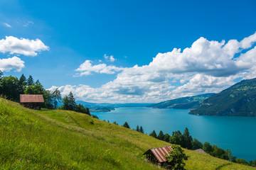 Landscape with Lake Thun near Leissingen