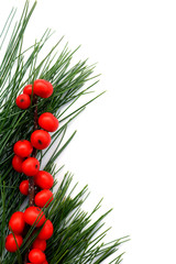 Vertical flat lay of white pine and bright red winterberry holly berries on white background, with copy space