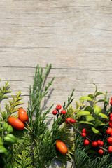 Vertical flat lay of colorful evergreen leaves and bright berries on white-washed wood background, with copy space