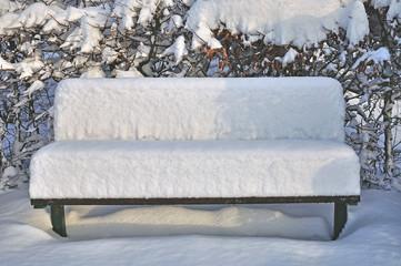 der erste Schnee im Kurpark von Goslar-Hahnenklee im Harz,Niedersachsen,Deutschland