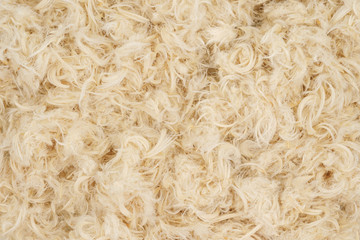 White goose feathers and fluff from pillows texture