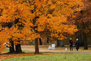 People walk under the trees with autumn coloured leaves in Tsarskoe Selo outside Saint Petersburg