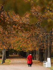 A woman walks under the trees with autumn coloured leaves in Tsarskoe Selo outside Saint Petersburg