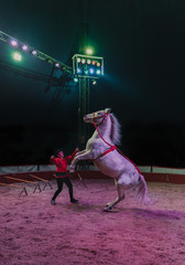 Circus actor with horse on arena
